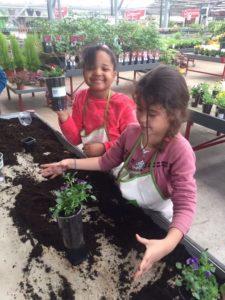 Atelier – Jardinerie Poulain de Magnanville 6 IMG 2452 web 225x300