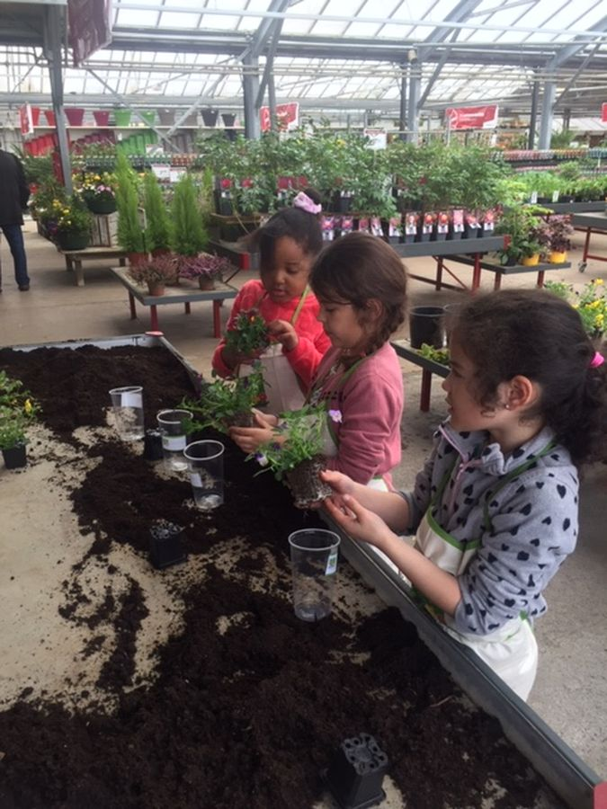 Atelier – Jardinerie Poulain de Magnanville 7 IMG 2449 web